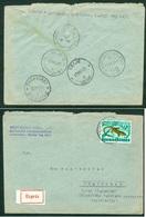 Yugoslavia 1963 Bahnpost Railway Post Ljubljana-Maribor B 39 Zagreb-Maribor B 29 Express Letter Celje Dravograd - Covers & Documents