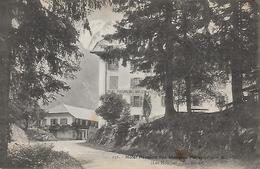 74)  LES  HOUCHES  - Hotel Pension Des Montées Pélissier  Et Le Mont Blanc - Les Houches