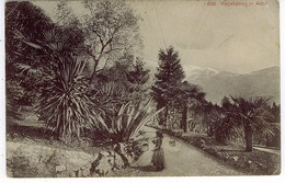 TRENTO LAGO GARDA ARCO  VEGETATION IN ARCO - Trento