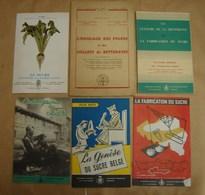 Liv. 269. Six Petits Livres Sur La Betterave Et La Fabrication Du Sucre - Cultural