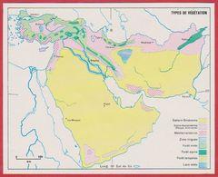 Type De Végétation En Arabie Saoudite, Syrie, Turquie, Iran, Irak, Afghanistan, Pakistan, Israël ... 1970. - Vieux Papiers
