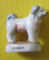 Fève Perso Védère - Animaux Des Pyrénées II - Chien  Le Labrit - Réf AFF 2008 113 - Animaux