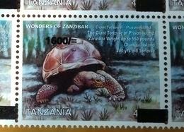 TANZANIA, 2018, MNH, FAUNA,REPTILES, TURTLES, TORTOISES, 1v OVERPRINT - Tortues
