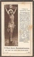 DP. LOUIS VANDENBULCKE ° ZONNEBEKE 1855 - + DADIZEELE 1921 - Godsdienst & Esoterisme