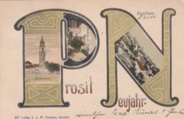 Prosit Neujahr New Year Greetings, Bautzen Saxony Germany Views, C1900s Vintage Postcard - New Year