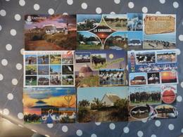 LOT  DE  9 CARTES  NEUVES  DE LA  CAMARGUE - Postcards