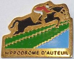 CHEVAL - HIPPODROME D'AUTEUIL - Animals