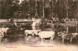 13252546 Brissy-Hamegicourt L'Abreuvoir Kuehe Am Fluss Brissy-Hamegicourt - Unclassified