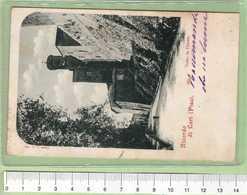 LARI Ricordo _ PISA Cartolina BN VG 1901 Rif.C0014 - Pisa