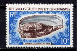NCE - 354** - CONUS GEOGRAPHUS - Nouvelle-Calédonie