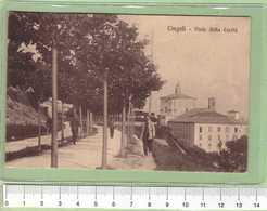 CINGOLI Viale Della Carita _ MACERATA Cartolina BN VG Rif.C0050 - Macerata