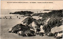 5LB 528. SAINT BREVIN L' OCEAN - ROCHERS COUVERTS DE GOEMON - Saint-Brevin-l'Océan