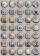 35 X Seashells Sea Shells  PIN's (1inch/25mm Diameter) SET 3 - Animals