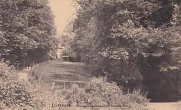 Linkebeek Chemin Conduisant Au Moulin Rose - Linkebeek