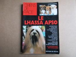 Le Lhassa Aspo (S. Paolantoni) éditions Vecchi De 1997 - Animaux