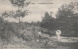 Heide-Calmpthout ,  Wandeling In 't Bosch,(F.Hoelen ,Cappellen ,n° 6293 ) - Kalmthout