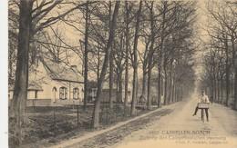 Cappellen Bosch , Kapellen ,  Zicht Op Den Calmpthoutschen Steenweg(F.Hoelen ,Cappellen , N° 8822 )Calmpthout - Kapellen