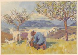 Carte Pro Juventute  No 140 : Thème Champêtre, La Traite Des Chèvres, Selon C. LINER - Pro Juventute