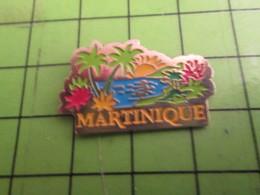 613C Pins Pin's / Rare & De Belle Qualité  THEME : AUTRES / LA MARTINIQUE COCOTIERS FLEURS TROPICALES ET ALLOCS - Ciudades