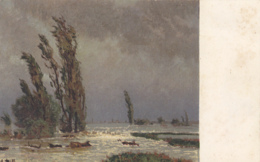 Carte Pro Juventute  No 104 : Paysage D'innondation, Selon Adolf STÄBLI - Pro Juventute