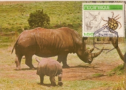Mozambique & Maxi Card, Fauna, Rinoceronte,  Rhinocerontidae 1980 (3555) - Rhinocéros