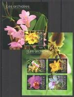 WW163 2013 NIGER NATURE FLOWERS ORCHIDS LES ORCHIDEES KB+BL MNH - Orchidées