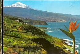 Spain & Circulated, Recuerdo De Tenerife, Zona Nore Con El Teide, Cidade Da Beira Moçambique 1981 (61) - Souvenir De...