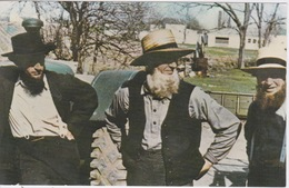 USA - PENNA - THE DUTCH COUNTRY -  AMISH MEN PEOPLE AT PUBLIC FARM SALE - Other