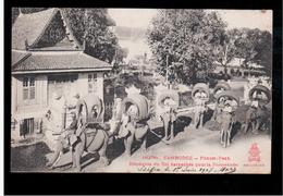 CAMBODIA  Cambodge Phnom Penh Elephants Du Roi Harnanchés Pour La Promenade Ca 1910 OLD POSTCARD 2 Scans - Cambodia
