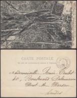 """Nouvelle-Calédonie 1907 - CP """" En Nouvelle-Calédonie - En Forêt Vierge """" (5G) DC1153 - Nouvelle-Calédonie"""