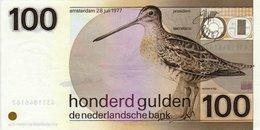 NETHERLANDS   P. 97 100 G 1977 UNC - 100 Florín Holandés (gulden)