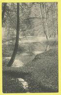 * Watermaal Bosvoorde - Watermael Boitsfort (Bruxelles) * (Nels) Foret De Soignes, La Source, étang De L'ermite - Watermael-Boitsfort - Watermaal-Bosvoorde