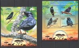 WW399 2013 TOGO TOGOLAISE WILD FAUNA OF AFRICA INDIGO BIRDS KB+BL MNH - Oiseaux