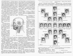 LES MUSCLES EXPRESSIFS DE LA FACE  1900 - Santé