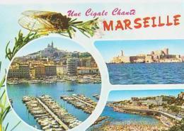 Bouches Du Rhone        H434        Une Cigale Chante Marseille ( 3 Vues ) - Marseille