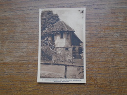 Mulhouse , Jardin Zoologique De La Ville De Mulhouse , Mouflons à Manchettes - Mulhouse