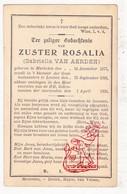 DP EZ Gabriella Van Aerden - Zr. Rosalia 22j. ° Mechelen 1877 † Klooster Gasthuis Leuven 1900 - Images Religieuses