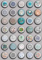35 X Seashells Sea Shells  PIN's (1inch/25mm Diameter) SET 5 - Animals