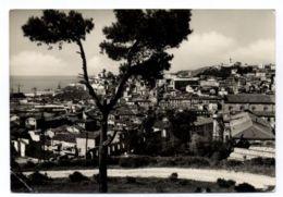 B9630 ANCONA - PANORAMA B\N VG 1954 - Ancona