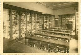 Wavre Notre-Dame - Institut Des Ursulines - Classe De Zoologie - Wavre