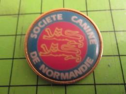 812H Pins Pin's / Rare & De Belle Qualité  THEME : ASSOCIATIONS / SOCIETE CANINE DE NORMANDIE Elle Est Très Incisive ! - Associations