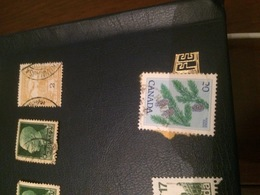 CANADA I PINI - Stamps