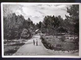 CALABRIA -COSENZA -SILVANA MANSIO -F.G. LOTTO N°321 - Cosenza