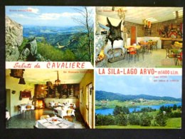 CALABRIA -COSENZA -PEDACE -F.G. LOTTO N°321 - Cosenza