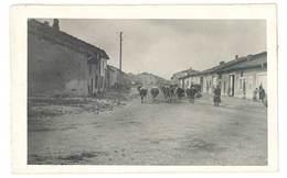 Photo Guerre 1914/1915 - Traversée De Village Avec Boeufs, Soldats ( Meuse Ou Meurthe Et Moselle ? ) - Guerre, Militaire