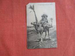 Mehariste Dans Les Oasis Du Sud Algerian Corner Chip & Tear -as Is    Ref 3099 - Africa
