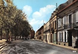 Montastruc-la-Conseillère - Avenue Général De Castelnau - Montastruc-la-Conseillère