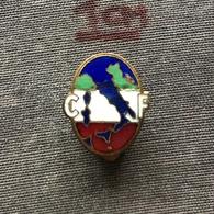 Badge Pin ZN007539 - Fascism / Nazism / WW2 Italy CF Confederazione Regno D'Italia - Associations