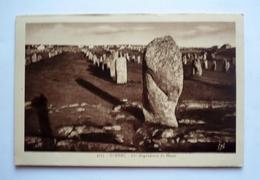 56 - CARNAC - Les Alignements Du MENEC - Dolmen & Menhirs