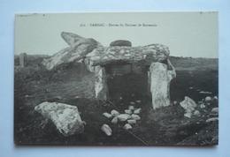 56 - CARNAC - Entrée Du Dolmen De KERMARIO - Dolmen & Menhirs